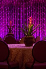 La Luz Events