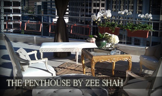 the-penthouse-by-zee-shah